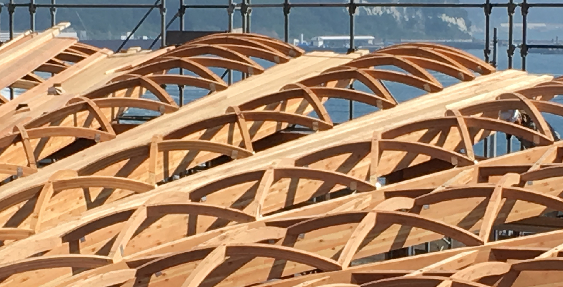 Biesse для деревянного домостроения: Фото 1